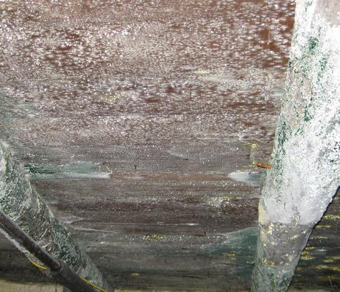 Mold in the Crawlspace  Before
