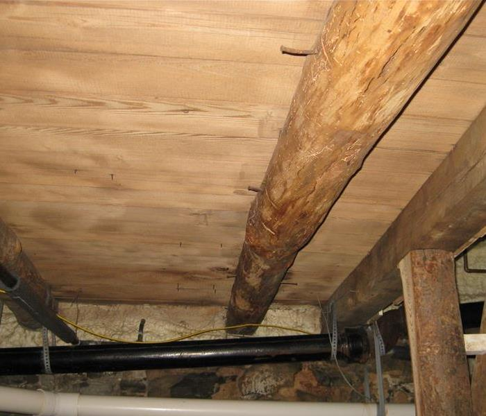 Mold in the Crawlspace  After