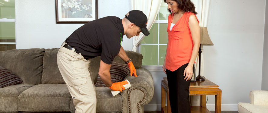Helena, MT carpet upholstery cleaning
