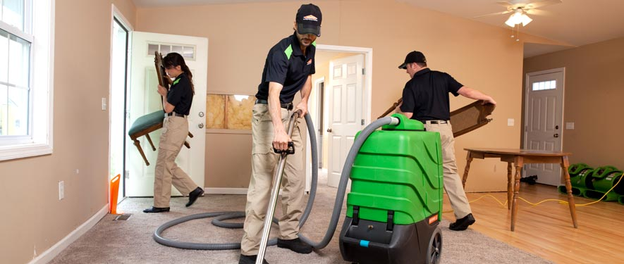 Helena, MT cleaning services